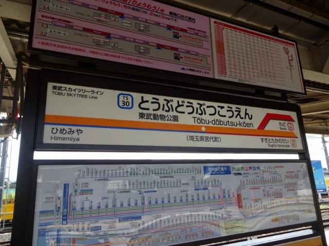 DSC09748 (1)